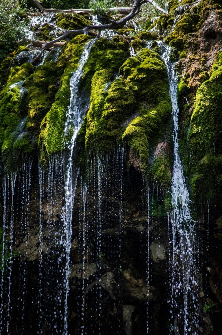 janieviehmanphoto_waterfall.jpg
